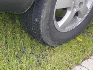 Стоянка на газоне штраф  москва