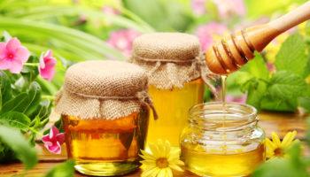 Пчеловодство как бизнес — с чего начать