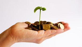 Разница между доходом, прибылью и выручкой