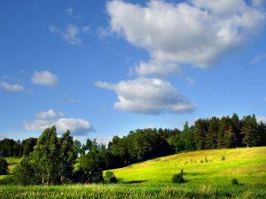 Как получить под родовое поместье землю