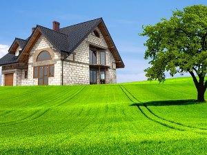 Образец предварительного договора купли продажи земельного участка