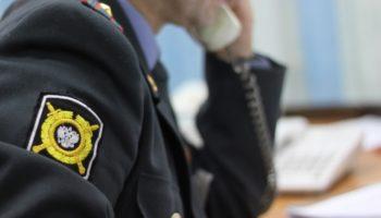 Образец заявления в полицию о краже