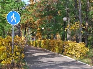 Дорожный знак пешеходная дорожка
