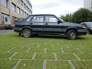 Какой штраф за парковку на газоне в Москве